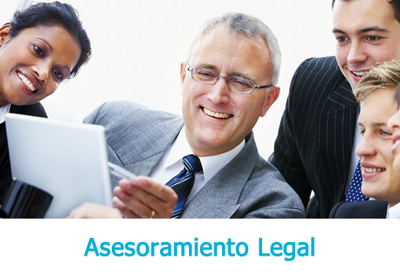 Technical and legal advisory services